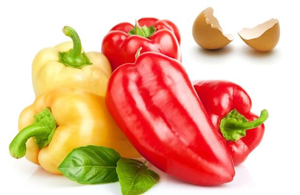 помидоры растут на подоконнике