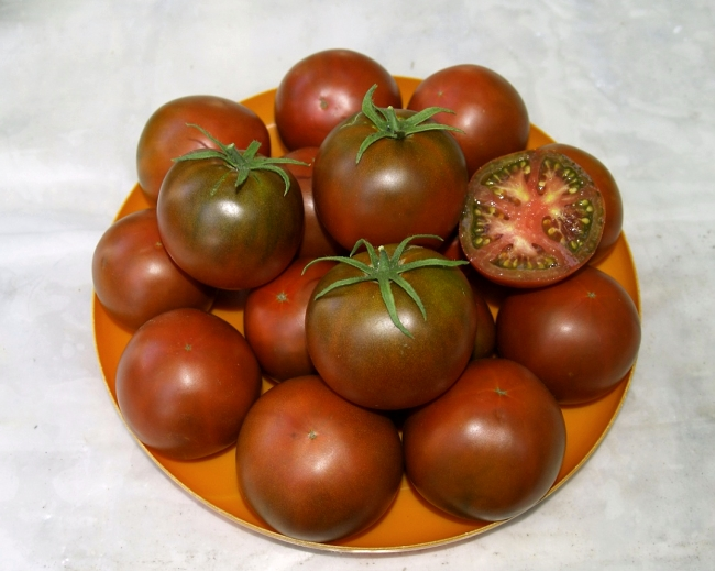томат шоколадка