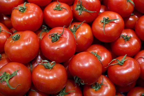томаты торбей f1 в куче