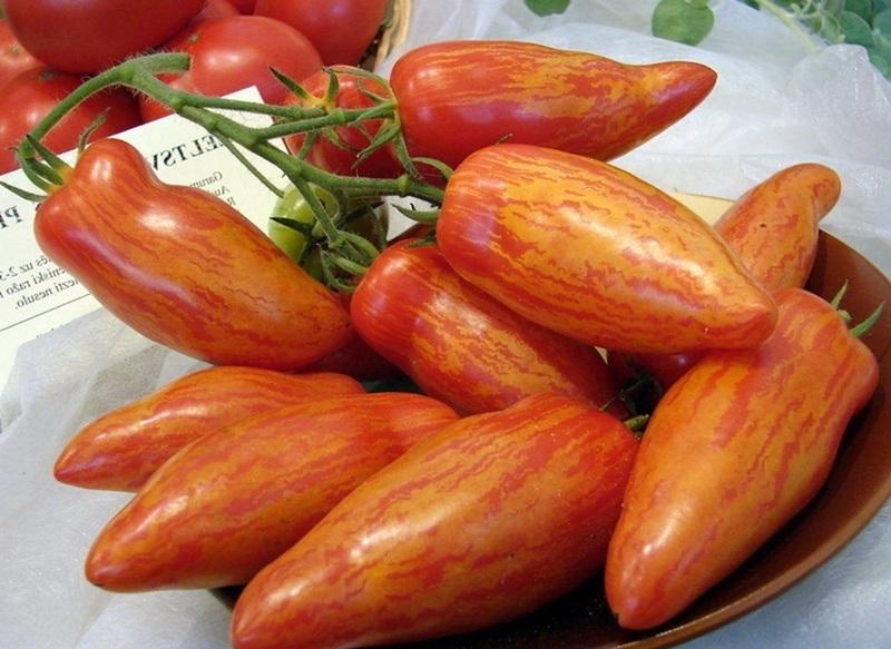 красный томат московский деликатес