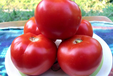 внешний вид томата красная гвардия