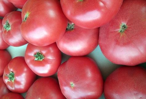 томаты розовая Катя f1 на столе