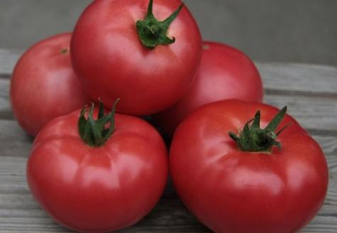 томат кибо на столе