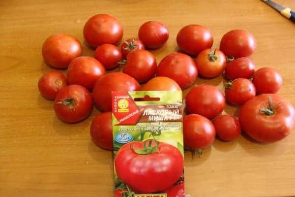 томат выращивание сорта