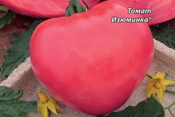 томат изюминка