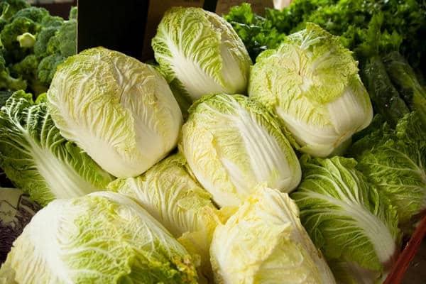 приготовления салатов