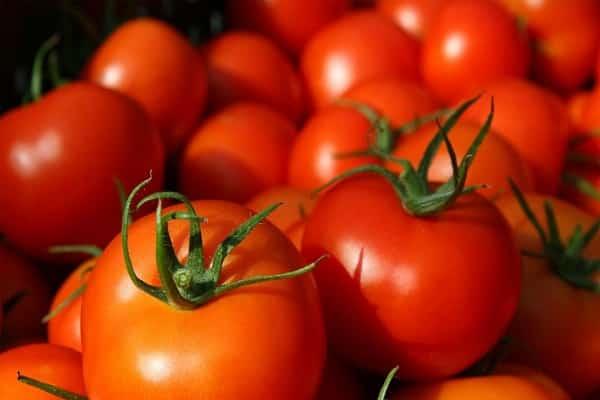 круглые томаты