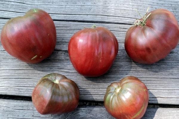 Описание сорта томата Черное сердце Бреда, особенности выращивания и ухода