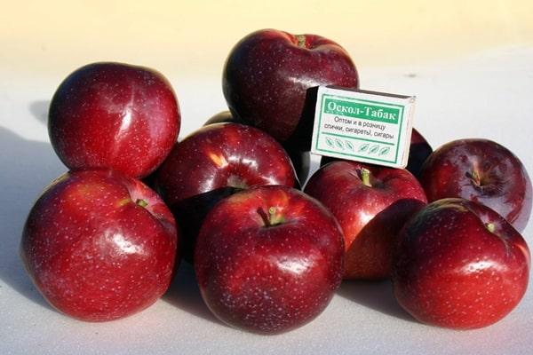 яблоки сорта вильямс прайд на столе