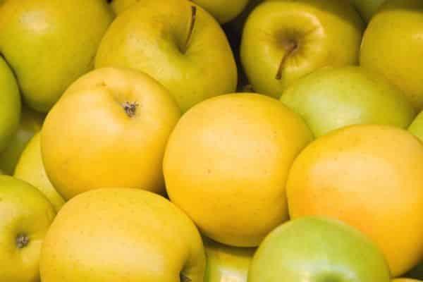 сорт лимонка