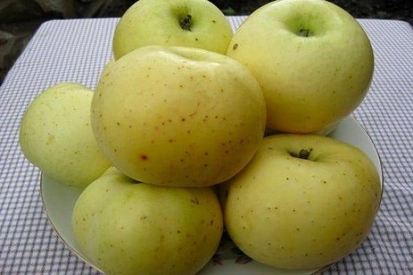осыпаемость яблок