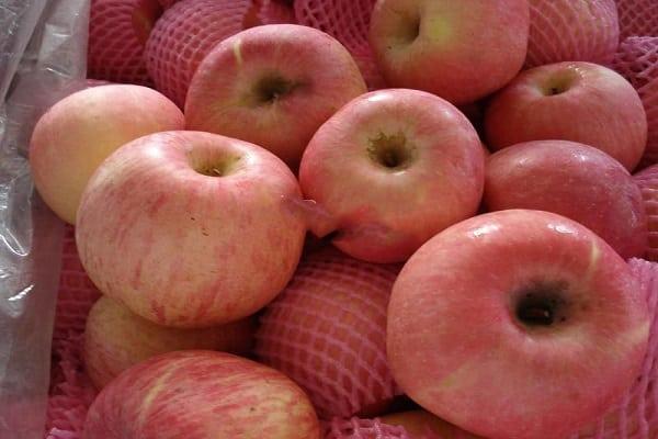 свойства плодов