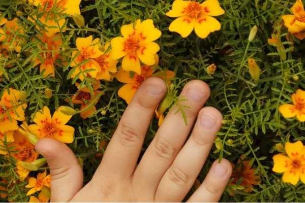в руках цветы