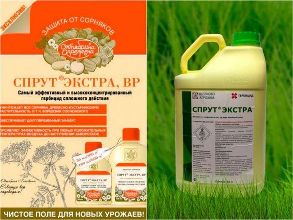 препарат Спрут Экстра