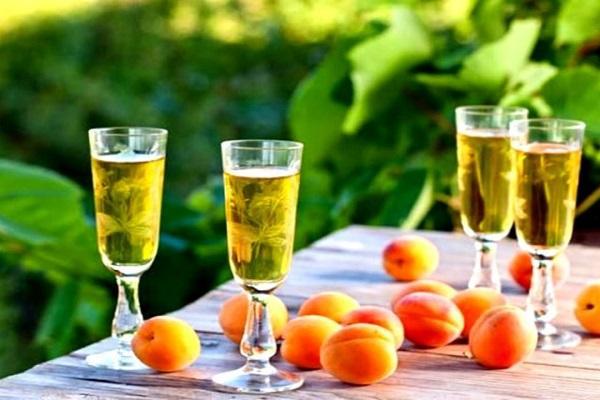 вино с плодами