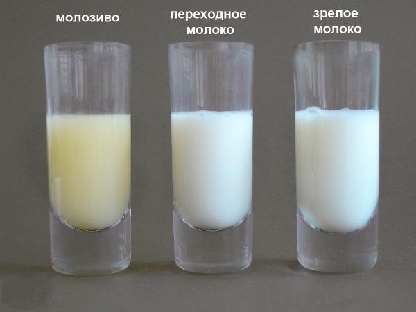 разное молоко