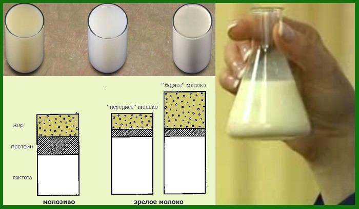 Химическая формула молока и таблица веществ в составе на 100 грамм, температура