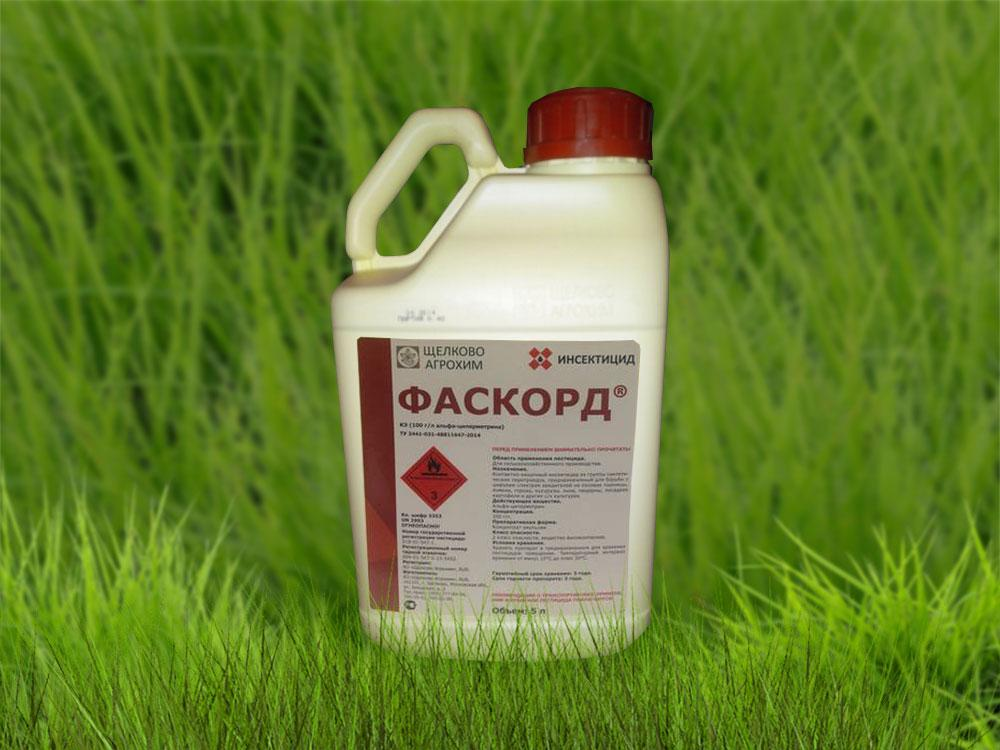 Фаскорд препарат