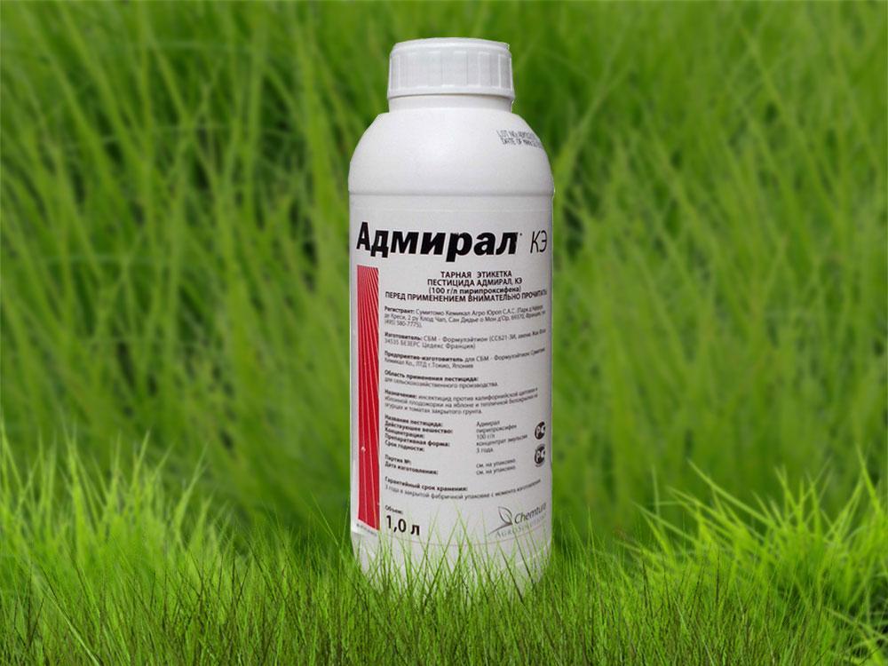 Инструкция по применению инсектицида Адмирал и дозировка препарата