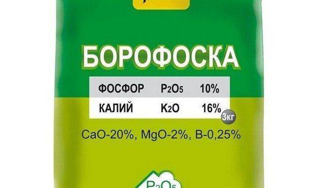 Борофоска