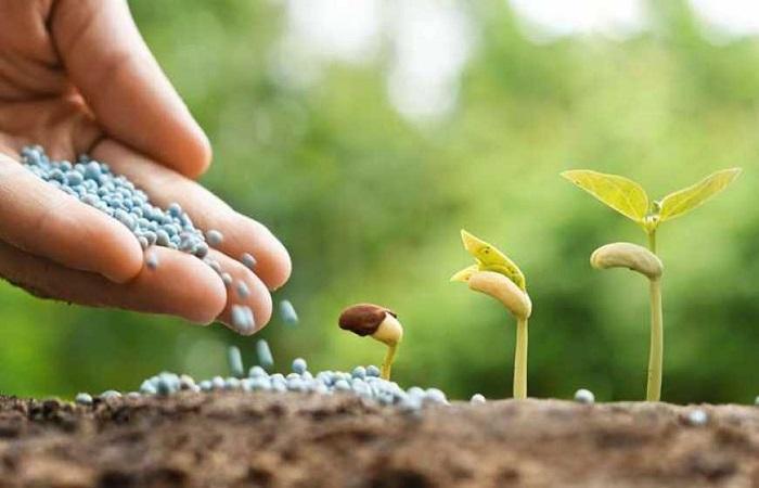 сыпать в почву