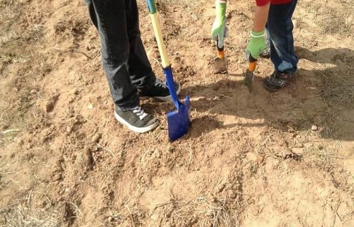 песок на земле