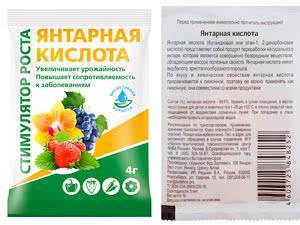 Инструкция и показания к применению янтарной кислоты для подкормки растений