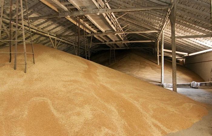 зерно на складе