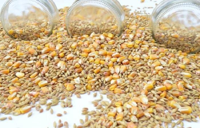 разбросана пшеница