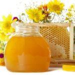 мед из золотарника