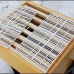 разделительная решетка для пчел