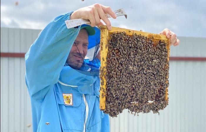 пчеловод с пчелами